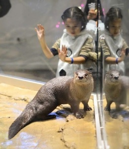 1real otter with children