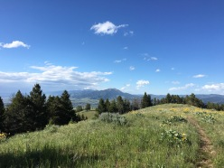 A glimpse at the beauty of Bozeman, Montana